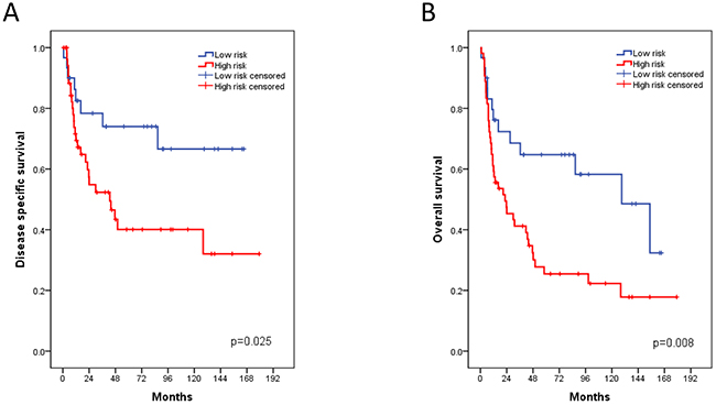 Kaplan-Meier plots of the Mannheim cohort for disease specific (A) and overall survival (B) associated with the FOXM1 risk stratification.