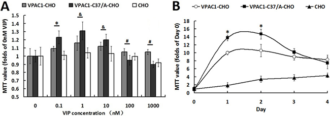 VPAC1-CHO cells had lower proliferative activity than VPAC1-C37/A-CHO cells.