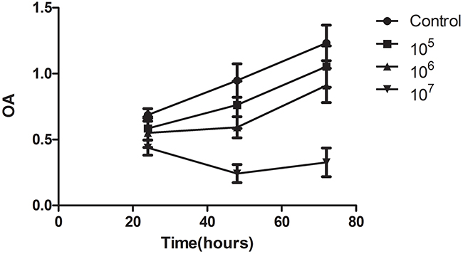 VNP 20009 inhibits the proliferation of McA-RH7777 cells.