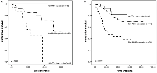 PD-L1 expression and outcome.