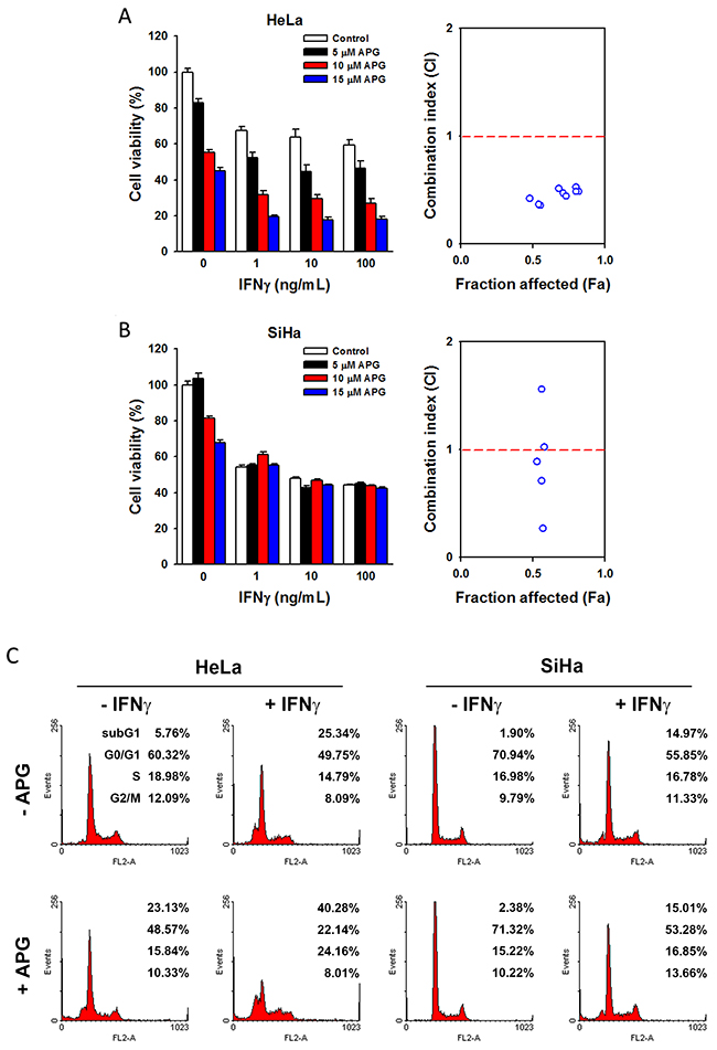The combinational anticancer activity of apigenin and IFNγ.