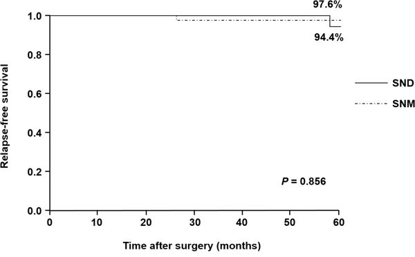 Relapse-free survival curves in the SNM and SND groups.