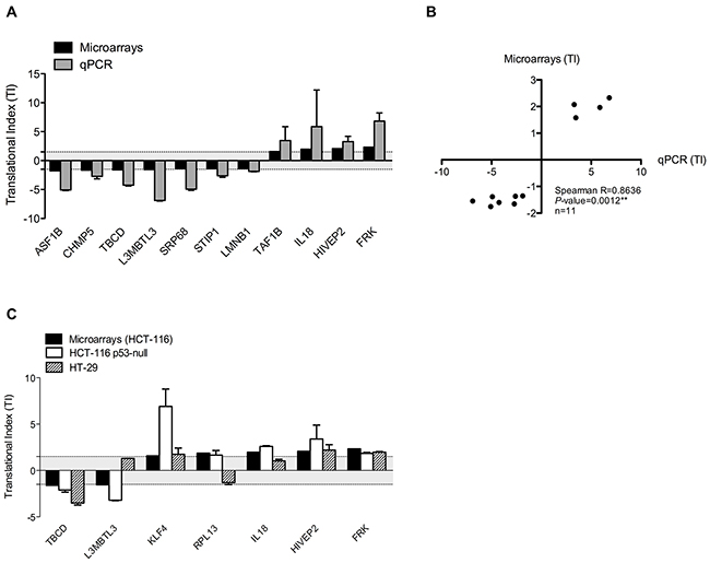 Validation of translatome profiling in a panel of colorectal cancer cell lines.