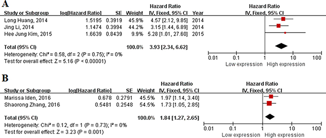 Forest plot of studies evaluating hazard ratios of up-regulated lncRNAs and the overall survival of cervical cancer.