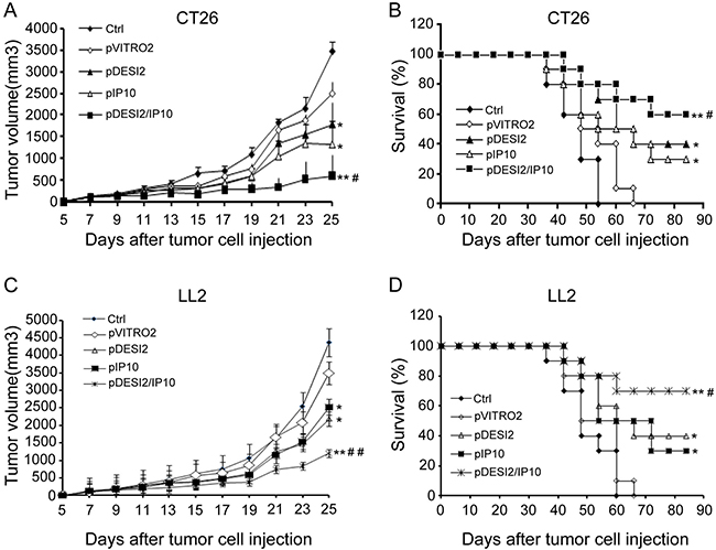 Improved therapeutic effect of co-expression of DESI2 and IP10 on two murine tumor models.