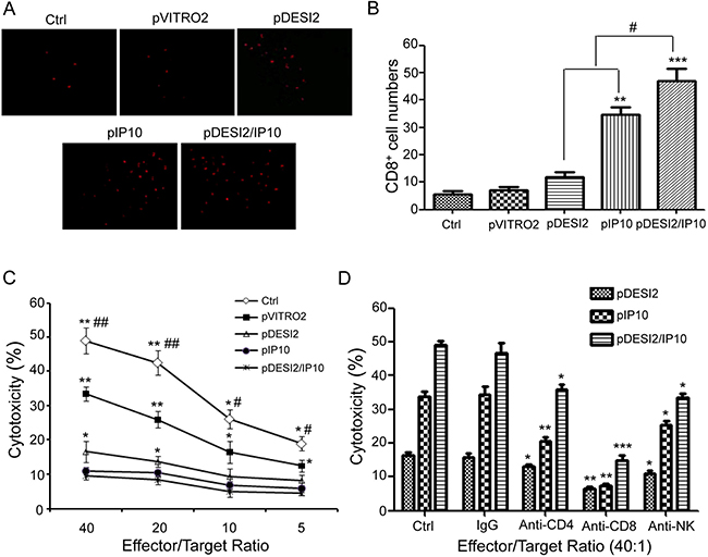 Immunological stimulating properties of DESI2 and/or IP10.