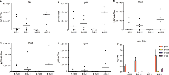 Fluoro-substituted STn vaccines improve the antibody response in the presence of adjuvant.