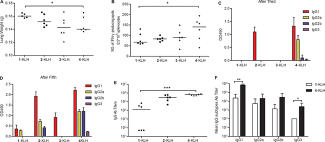 Fluoro-substituted STn vaccines induce efficient antitumor immunotherapy, T cell-mediated immunity and antibody immune response in the absence of adjuvant.