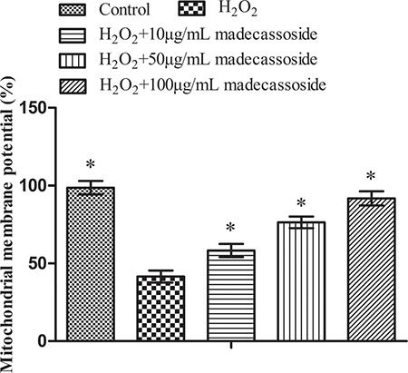 Madecassoside improves the MMP under oxidative stress.
