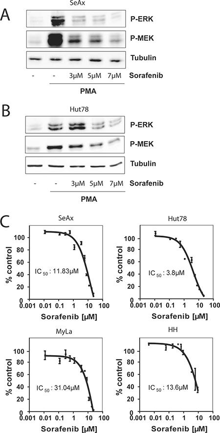 Sorafenib blocks RAS signaling and inhibits cell growth.