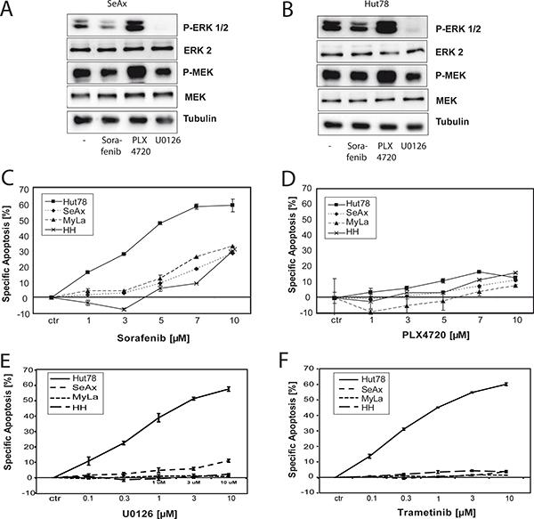 NRASQ61K sensitizes towards treatment with Sorafenib.