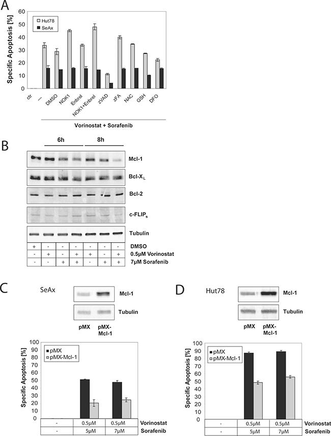 Sorafenib and Vorinostat induce apoptosis synergistically via down-regulation of Mcl-1.