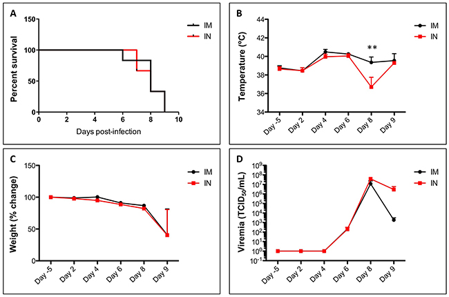 Survival, temperature, weight and viremia in SUDV-infected ferrets.