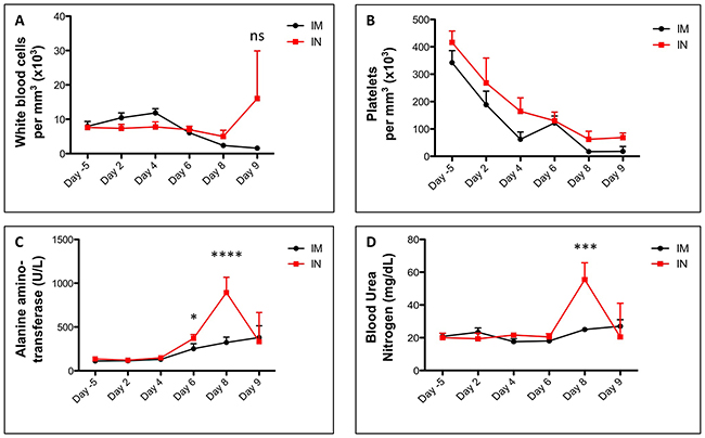 Blood counts and biochemistry in SUDV-infected ferrets.