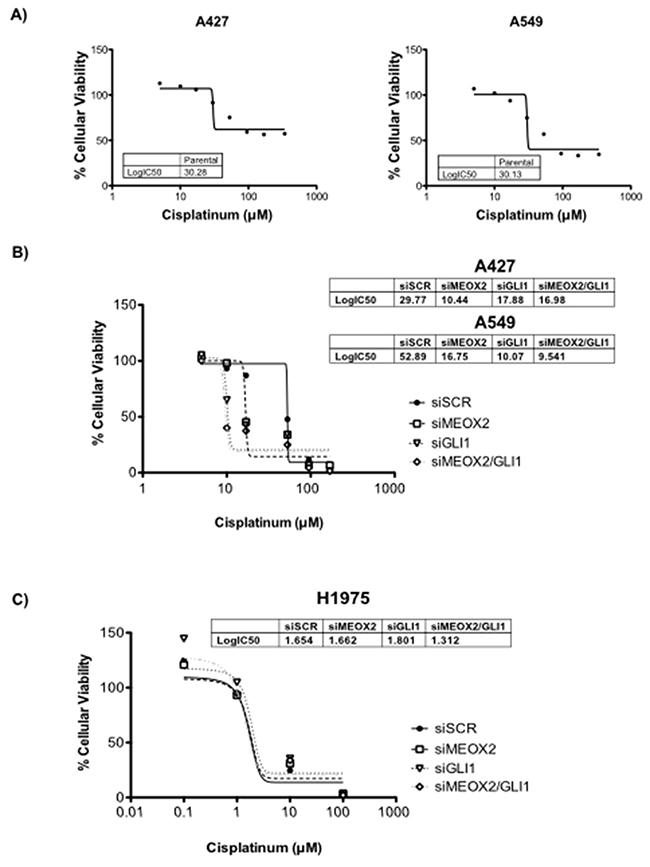 Cytotoxic cellular resistance exhibited MEOX2-GLI1 axis-dependent resistance via a cisplatinum dose-dependent mechanism.