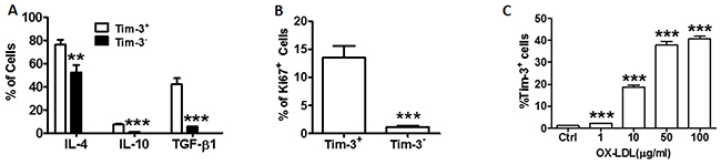 Tim-3 correlates with the production of anti-atherogenic cytokines and proliferation of HUVECs.