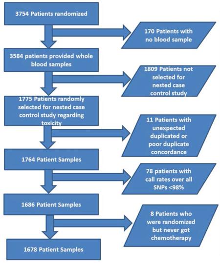 Figure 1. Patient selection chart.