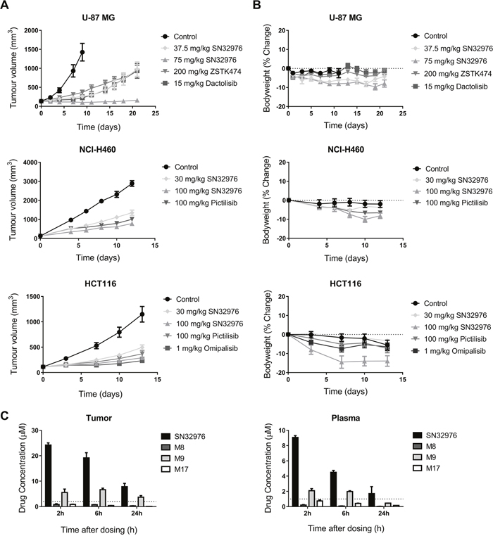 SN32976 prevents tumor growth at tolerated dose levels.