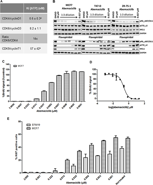 Enzymatic selectivity of abemaciclib and effect on cell proliferation.