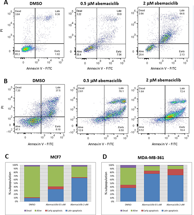 Apoptosis in breast cancer cell lines after abemaciclib treatment, as measured by annexin V binding.