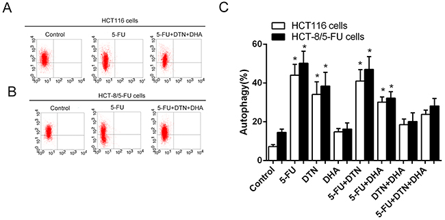 Characteristics of autophagy in HCT116 cells following different treatments of 5-FU, DTN and DHA.