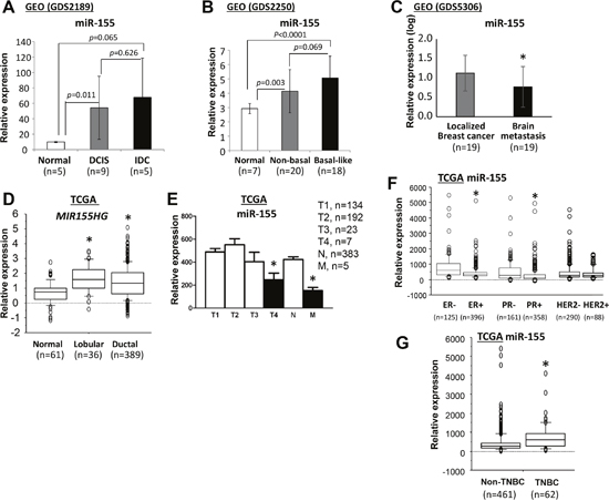 Expression of miR-155 in human normal breast and breast cancer samples.