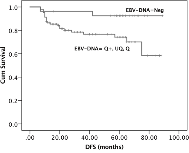 Kaplan-Meier survival curves showing the probability of DFS in locally advanced EBER positive NPC patients.