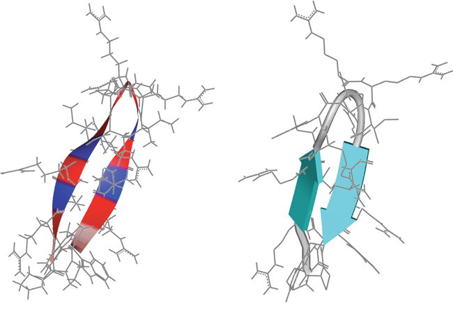 Structure prediction of peptide R-DIM-P-LF11-334.