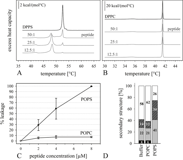 Influence of peptide R-DIM-P-LF11-334 on model systems of cancer and non-cancer cells.