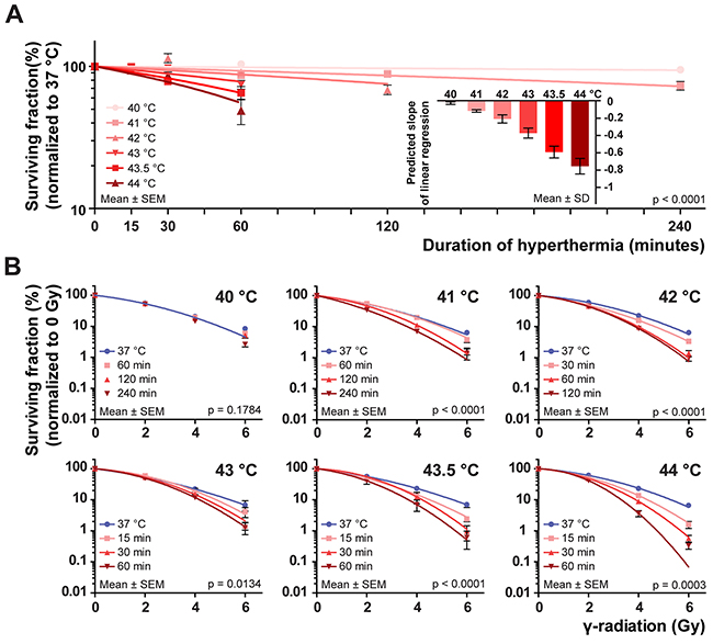 Plating efficiency and colony cell survival at different thermal doses.