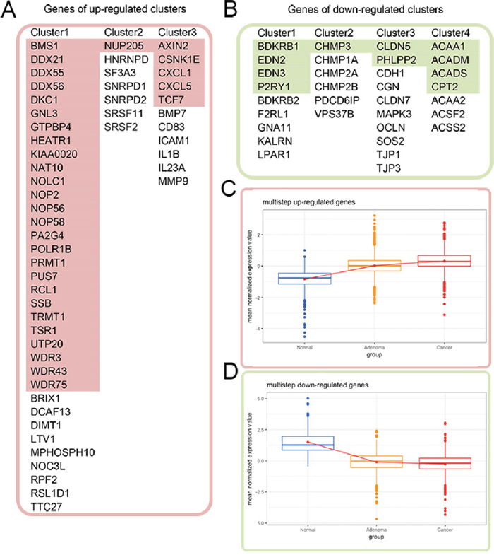 Cross validation of the gene expression patterns in the multistep carcinogenesis model.
