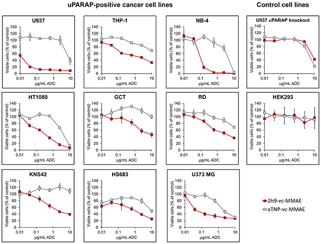Effect of uPARAP-directed ADC 2h9-vc-MMAE on uPARAP-positive cancer cells in vitro.