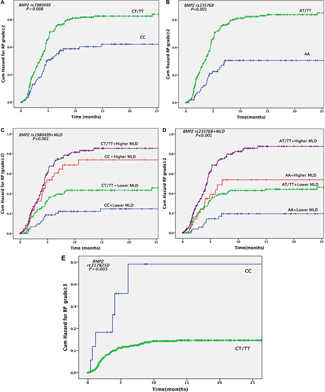 Cumulative probability of grade ≥ 2 or 3 radiation pneumonitis (RP) in 664 patients with non-small cell lung cancer according to BMP2 genotypes.