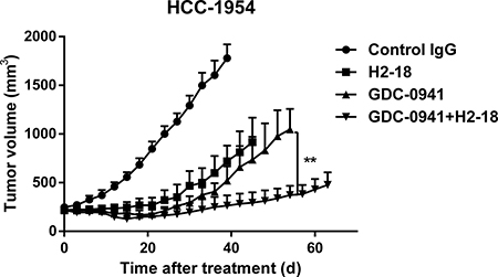 H2-18 plus GDC-0941 suppressed the in vivo growth of HCC-1954 xenografts.