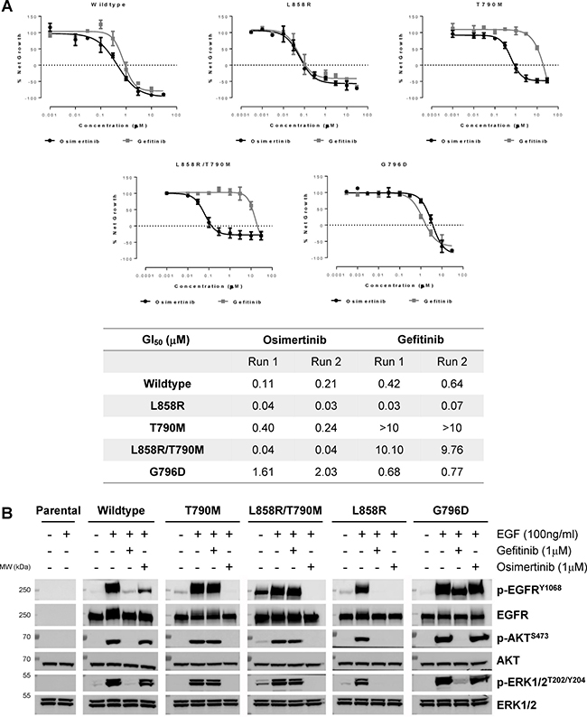 EGFR G796D confers resistance to osimertinib.