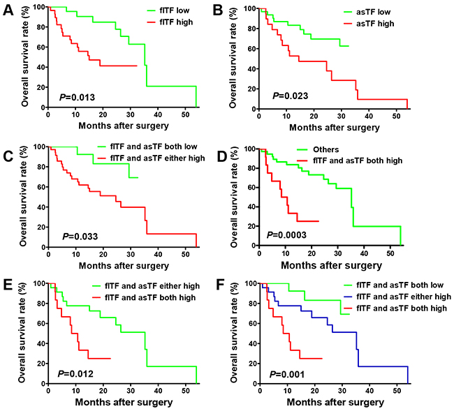 Prognostic value of flTF and asTF levels in human gastric cancer tissues.