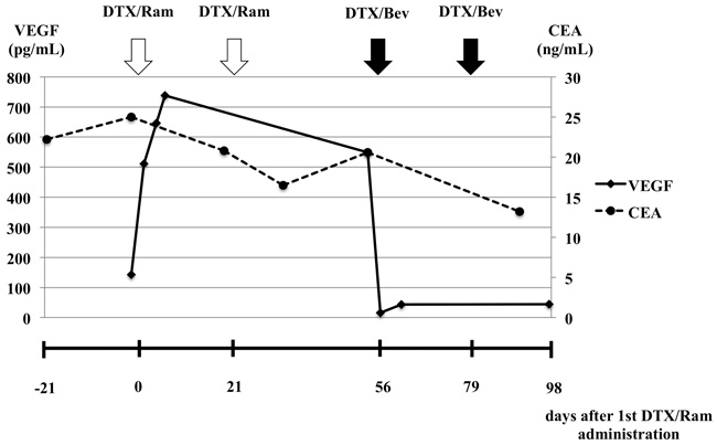 Changes in serum VEGF and carcinoembryonic antigen levels before and after ramucirumab plus docetaxel and bevacizumab plus docetaxel combination therapy.