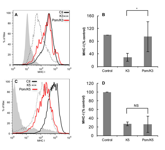 Effect of Pom on down-regulation of MHC-I in BJAB cells transfected with K3 or K5.
