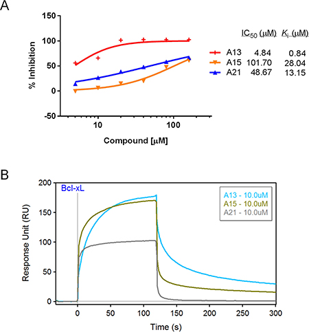 Validation of compounds A13, A15, and A21 binding to Bcl-xL protein.