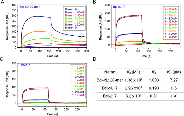 SPR analysis of compound 7.