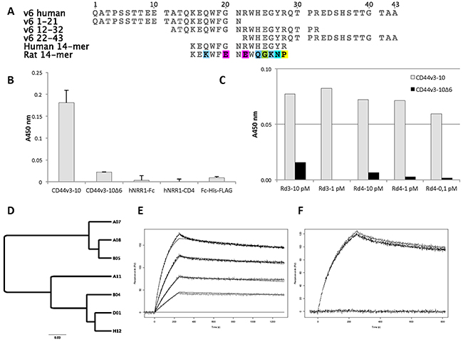 Antigens, post-selection analysis and characterization of scFv clones.