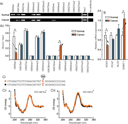 Fig 4: Characteristic histone modification pattern of -132 site methylation in
