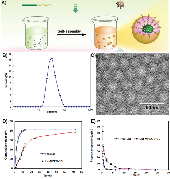 Preparation and identification of Luteolin/MPEG-PCL micelles.