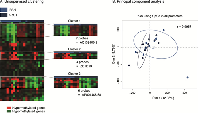 idiopathic and heritable PAH patients do not have a distinct endothelial methylation-based signature.