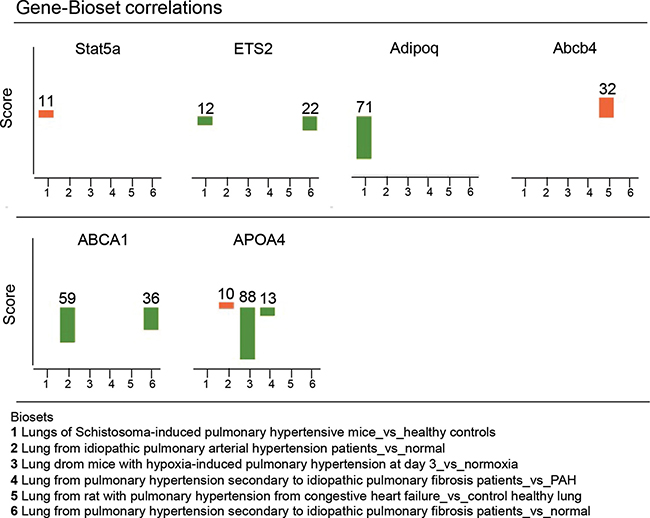 Validation of the DNA methylation profile using public gene expression data sets obtained in lung tissues from experimental and human pulmonary hypertension.