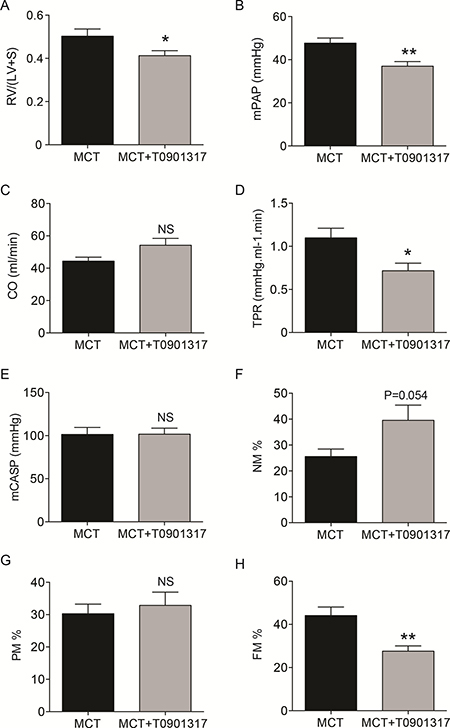 In vivo effects of the ABCA1-activating compound T0901317 on hemodynamics, right heart hypertrophy and pulmonary vascular remodeling in monocrotaline-induced pulmonary hypertension in rats.
