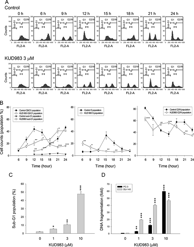 Effect of KUD983 on cell-cycle progression.