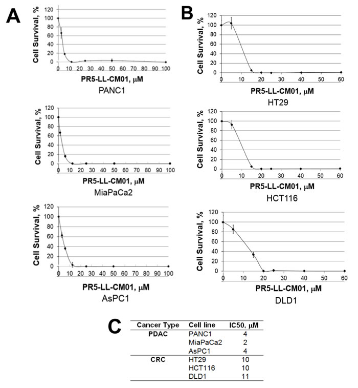 PR5-LL-CM01 is a potent inhibitor of PRMT5 in PDAC and CRC cells.
