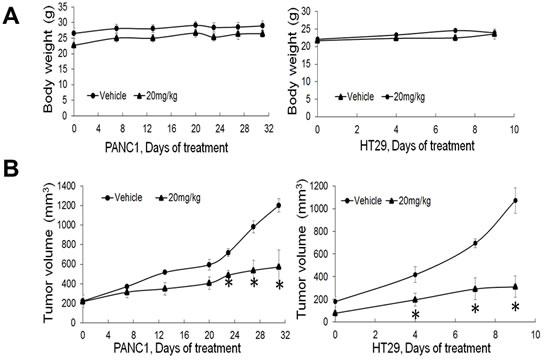 PR5-LL-CM01 displayed significant anti-tumor effect
