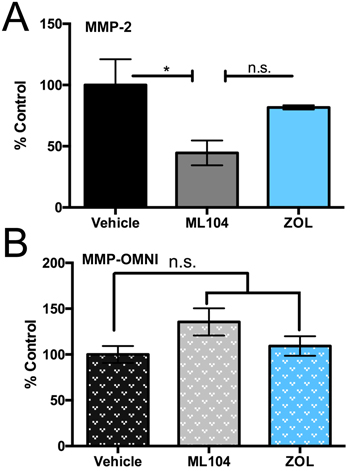 BMMPIs selectively inhibit MMP-2 activity in the bone marrow microenvironment.